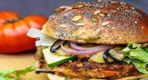 Burger végétarien Le Mermoz Montoire 41